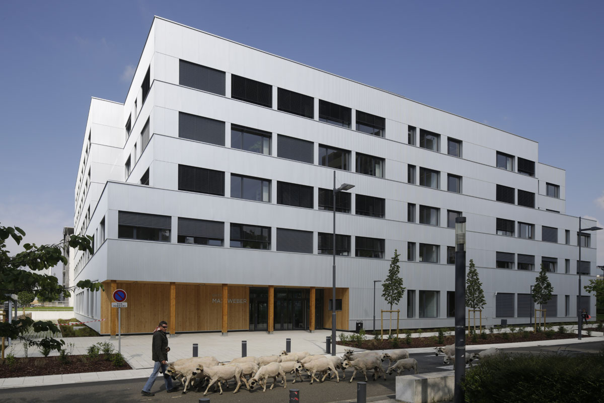 Livraison du plus grand bâtiment de bureaux 100% bois en france